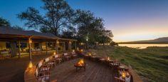 Selva chique! Descubra novos hotéis ultraluxuosos para um safári na África