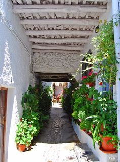Me gusta Andalucía: Calle de Pampaneira (Alpujarra Granadina) 。 Where my beautiful memory lies ~One day I will be back Alpujarra. All About Spain, Granada Spain, Spain Holidays, Spanish House, Tourist Spots, Seville, Spain Travel, Trip Planning, The Good Place