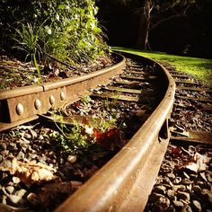 The tracks are as beautiful as the ride at Esplanade Scenic Railway in Palmerston North. Toot, Adventure Is Out There, Railroad Tracks, New Zealand, Trail, Homes, Beautiful, Instagram, Houses