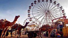 pushkar-fair