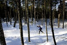 Cross-country skiing in Maine.