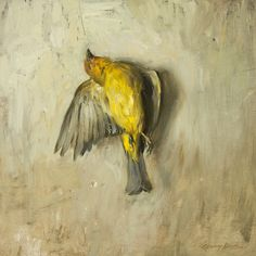 Requiem for a Western Tanager. 16 x 16 in, oil. Quang Ho