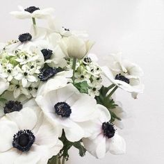 Anemone Wedding, Wedding Flowers, White Anemone, White Flowers, My Flower, Flower Power, Always A Bridesmaid, Baby Shower Flowers, Pink Peonies