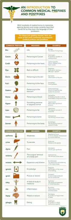 With hundreds of medical terms to memorize, aspiring health professionals need to undertand common medical prefixes and postfixes. This infographic explores common medical prefixes and postfixes and their meaning.  (Examville.com - the education marketplace)
