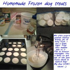 Frozendogtreats.jpg Photo:  This Photo was uploaded by ndnhunny. Find other Frozendogtreats.jpg pictures and photos or upload your own with Photobucket f...