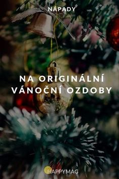 Vytvořte si sami vánoční ozdoby, které nikdo nemá! #vanoce #christmas #ozdoby #kreativita #diy Culture, Plants, Christmas, Home Decor, Xmas, Decoration Home, Room Decor, Navidad, Plant