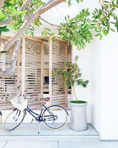 An inspired home collection. Luxury bedding, furniture, décor, nursery and more. Brunch Bar, Bike Details, Wheels And Tires, Window Coverings, Ladder Decor, Pattern Design, Lily, Public, House Styles