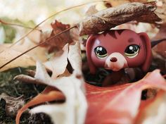 Littlest pet shop dog picture (c) lpsspringtv