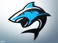 Deep Contact Shark Sports Logo