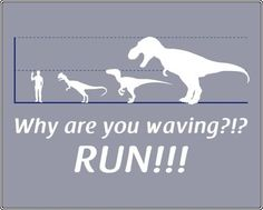 why are you waving - run