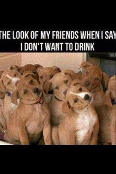 Funny  drinking