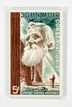 commemorative john muir postage stamp enlarged on canvas