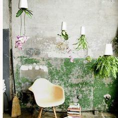 Un jardin d'intérieur suspendu #pourchezmoi
