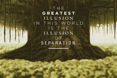 """""""The greatest illusion in this world is the illusion of separation. Things you think are separate and different are actually one and the same."""" -Guru Pathik"""