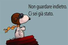 Ci sei già stato Wall Quotes, Life Quotes, Italian Memes, Italian Phrases, Snoopy Love, Something To Remember, Magic Words, Sarcasm Humor, Emoticon