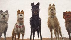 Isle of Dogs – The new movie from Wes Anderson (trailer)