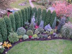 Gardening – Gardening Ideas, Tips & Techniques Evergreen Landscape, Front Garden Landscape, Evergreen Garden, Landscape Plans, Burm Landscaping, Landscaping Along Fence, Outdoor Landscaping, Arborvitae Landscaping, Garden Design Plans