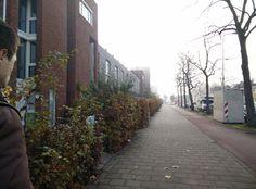 Constant Erzeijstraat in Utrecht, Onze bestrating zal het zelfde zijn