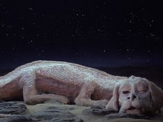 Image result for a never ending story dog dragon t