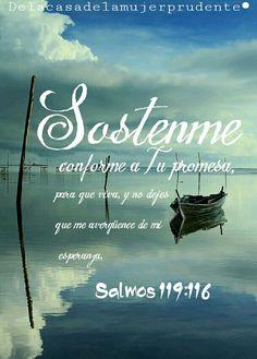 Sostenme conforme a Tu promesa, para que viva, y no dejes que me avergüence de mi esperanza. Salmos 119:116