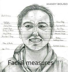 Cheek Bone Anatomy Cheek Anatomy Diagram Human Anatomy Diagram ...