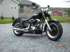 gotta find me a get-rich-quick scheme that actually works (without landing me in jail...) Harley Davidson Fatboy