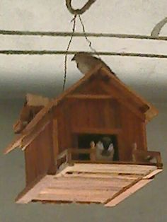 sparrow home