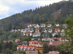black forest, germany | ... cake. This forest, covering South Western Germany, is famous for its