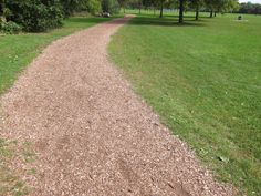 Inspiration: path leading between dorms on the back (forest-facing) side