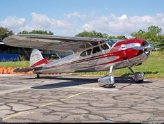 Photos: Cessna 195 Aircraft Pictures | Airliners.