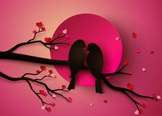Love Birds Vector Images (over Love Wallpaper Backgrounds, Look Wallpaper, Bird Wallpaper, Background Design Vector, Background Patterns, Cherry Blossom Background, Rama Seca, Photo Collage Template, Share Pictures