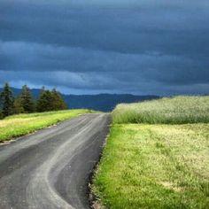 #storm #blacksky #gewitter #green #grass #gras #grün #street #switzerland #suizzera #suisse #suiza #hills #emmental #igers #igerssuisse #natur #natur_love #instanaturelover #rainweather #rain #clouds #blackclouds #summer #summerstorm - @nigy84