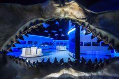 Los tiburones, mantas y rayas son animales marinos cuyo esqueleto está conformado por cartílago (material orgánico similar del que se componen las orejas humanas) y tienen entre cinco y siete branquias que les sirven para respirar.