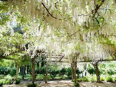 Campovida Hopland Weddings Sonoma Wine Country Reception Venues 95449