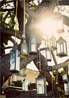 Getting married under a big tree? We love this idea to hang numerous vintage lanterns from the branches as a backdrop. Photographed by Zelo Photography.