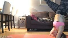 How to terrify all your cats at once | Gif Finder – Find and Share funny animated gifs