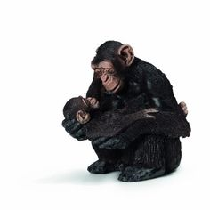 Chimpanzee Female with Baby (AFRICA)