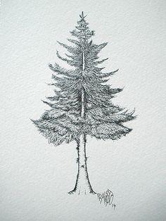 how to draw pine trees - Szukaj w Google