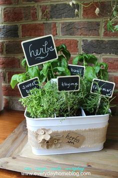 Herbs Gardening Utensil Caddy Herb Garden - Welcome to The Creative Gallery! We're so happy you could join us! Hosted by: Katie at The Casual… Diy Herb Garden, Garden Gifts, Indoor Garden, Garden Ideas, Herbs Garden, Tree Garden, Indoor Herbs, Garden Shrubs, Succulents Garden