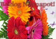 Névnapi képeslapok   pimpilla Floral Wreath, Wreaths, Plants, Decor, Floral Crown, Decoration, Door Wreaths, Deco Mesh Wreaths, Plant