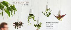 Maceta colgante Sky Planter Recycled de Boskke. Sky Planter es un diseño inteligente y ecosensible. Los materiales utilizados son reciclados. Transforma la visión de la naturaleza además de ayudarnos a ahorrar agua y purificar el ambiente.