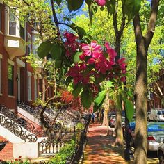 Love this area of Boston.