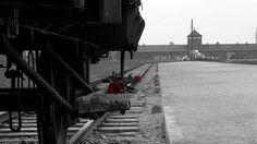 Emlék Auschwitzból