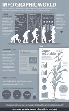 Info Graphic World super vegetable