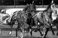 Harness Race- Pencil Drawing by Jerry Winick