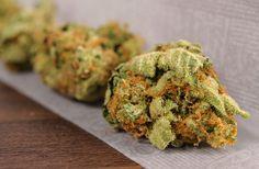 Secret Bill Would Legalize Marijuana on a Federal Level