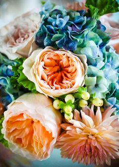 Orange & blue flowers