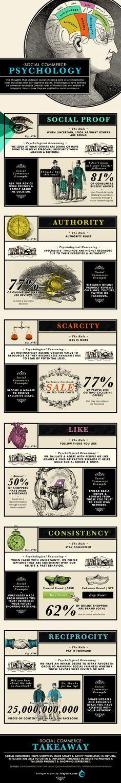 Engelse infographic over de 6 principes van Robert