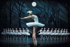 St. Petersburg Ballet Theatre's Pima ballerina, Irina Kolesnikova in Swan Lake.