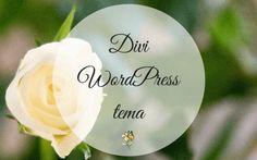 Divi: Det kreative WordPress tema